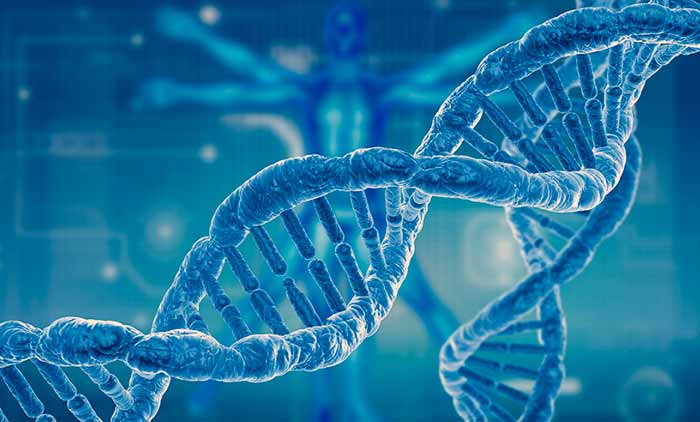 Омоложение и похудение с помощью ДНК теста